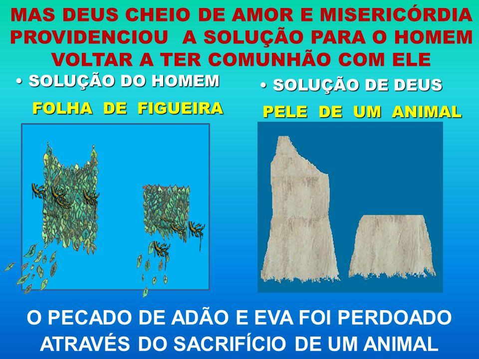 O PECADO DE ADÃO E EVA FOI PERDOADO ATRAVÉS DO SACRIFÍCIO DE UM ANIMAL