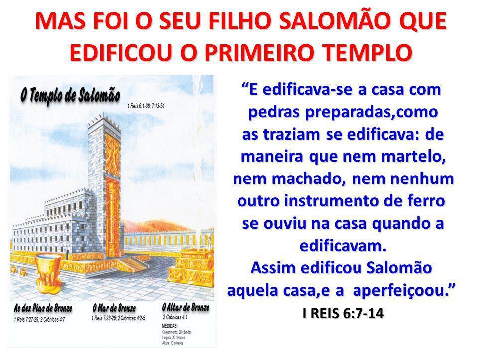 MAS FOI O SEU FILHO SALOMÃO QUE EDIFICOU O PRIMEIRO TEMPLO
