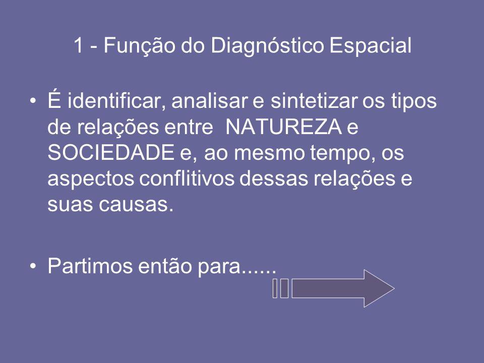 1 - Função do Diagnóstico Espacial