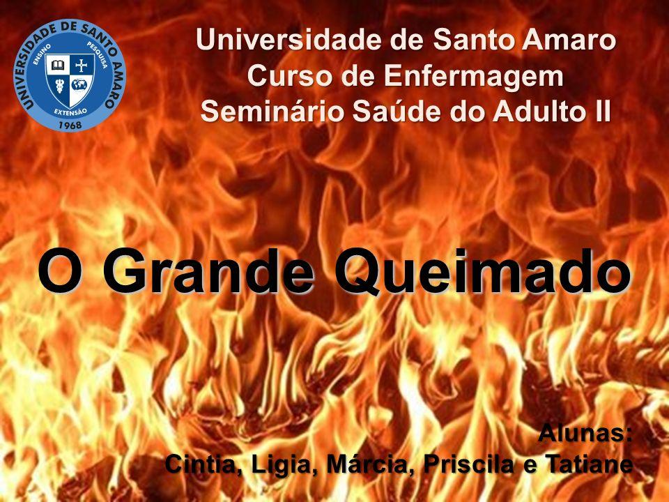 Universidade de Santo Amaro Seminário Saúde do Adulto II