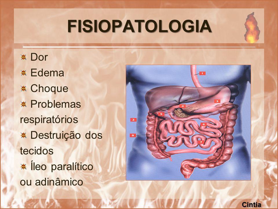 FISIOPATOLOGIA Dor Edema Choque Problemas respiratórios Destruição dos