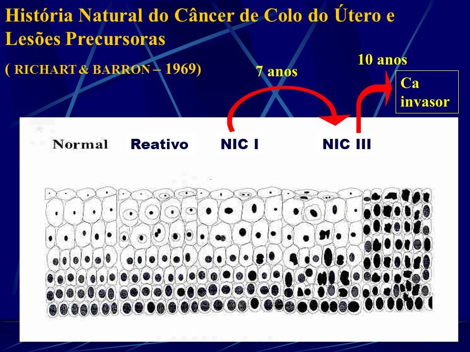 História Natural do Câncer de Colo do Útero e Lesões Precursoras