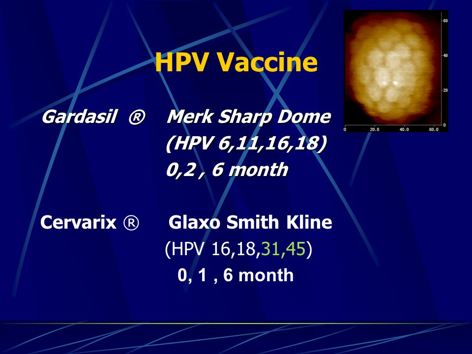 HPV Vaccine Gardasil ® Merk Sharp Dome (HPV 6,11,16,18) 0,2 , 6 month