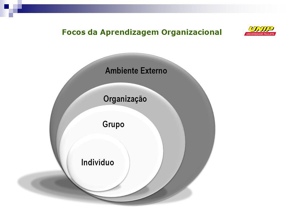 Focos da Aprendizagem Organizacional