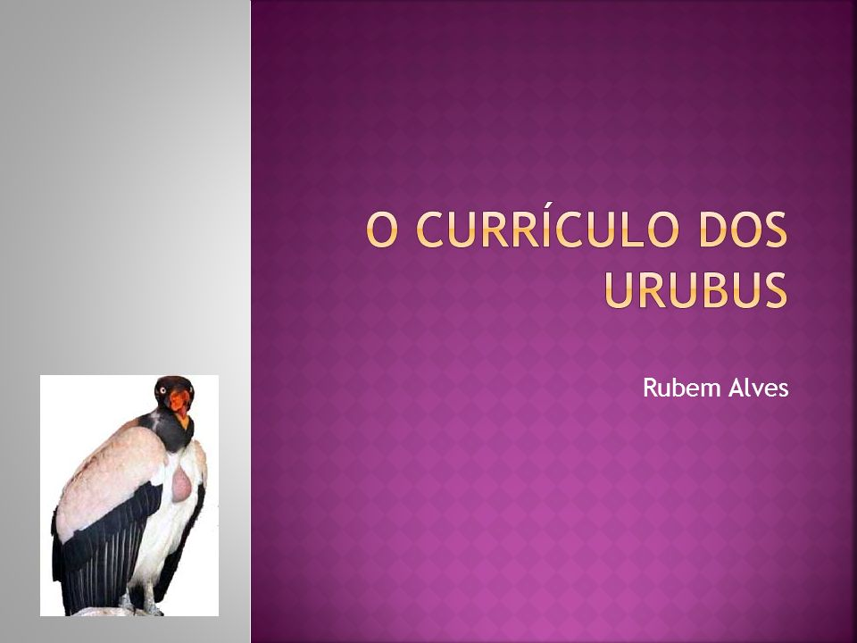 O CURRÍCULO DOS URUBUS Rubem Alves