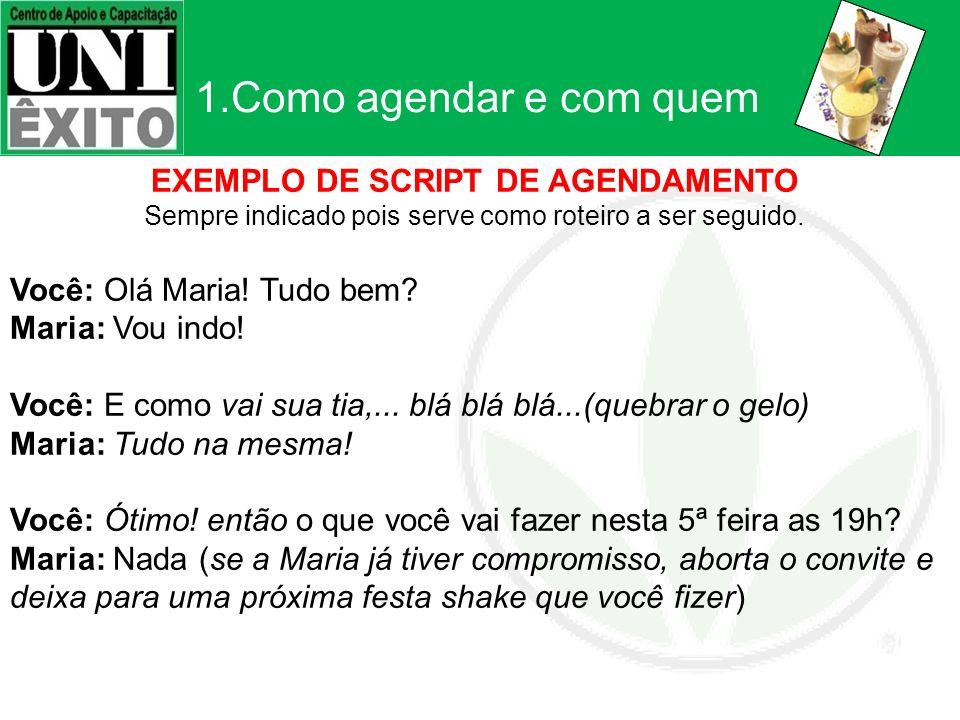 EXEMPLO DE SCRIPT DE AGENDAMENTO