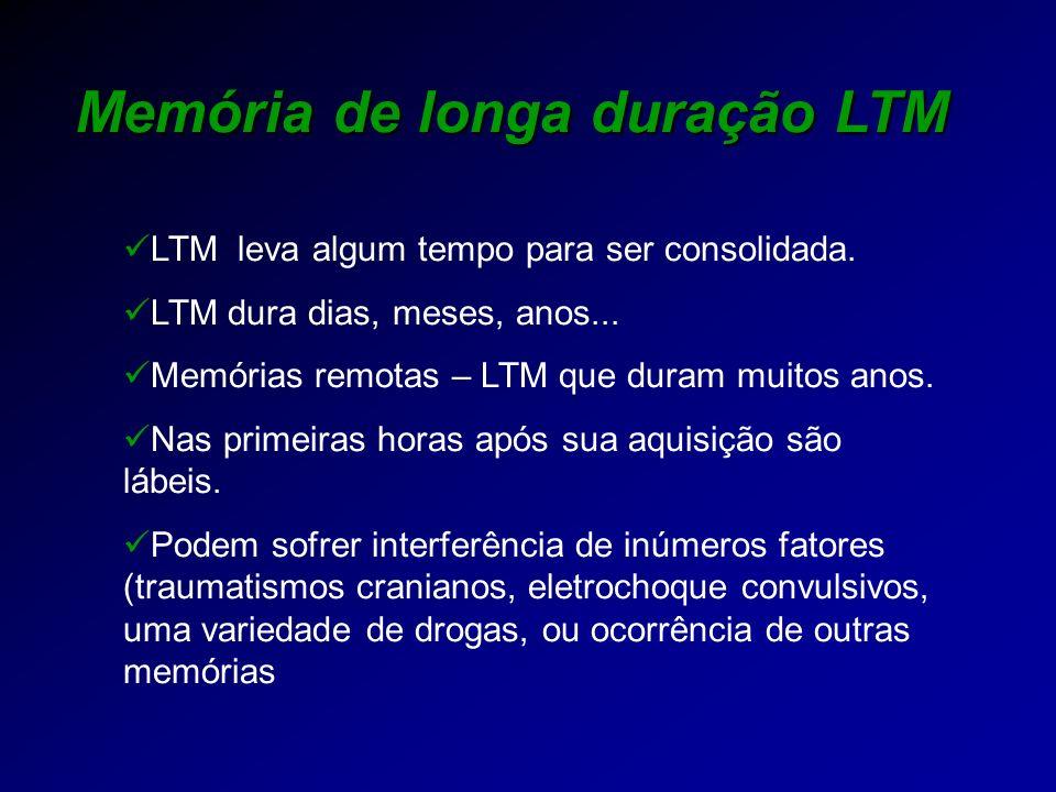 Memória de longa duração LTM