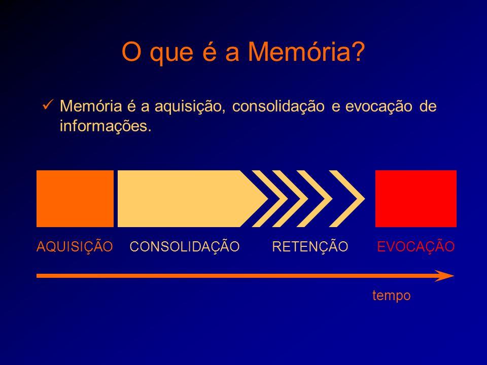O que é a Memória Memória é a aquisição, consolidação e evocação de informações. AQUISIÇÃO. CONSOLIDAÇÃO.