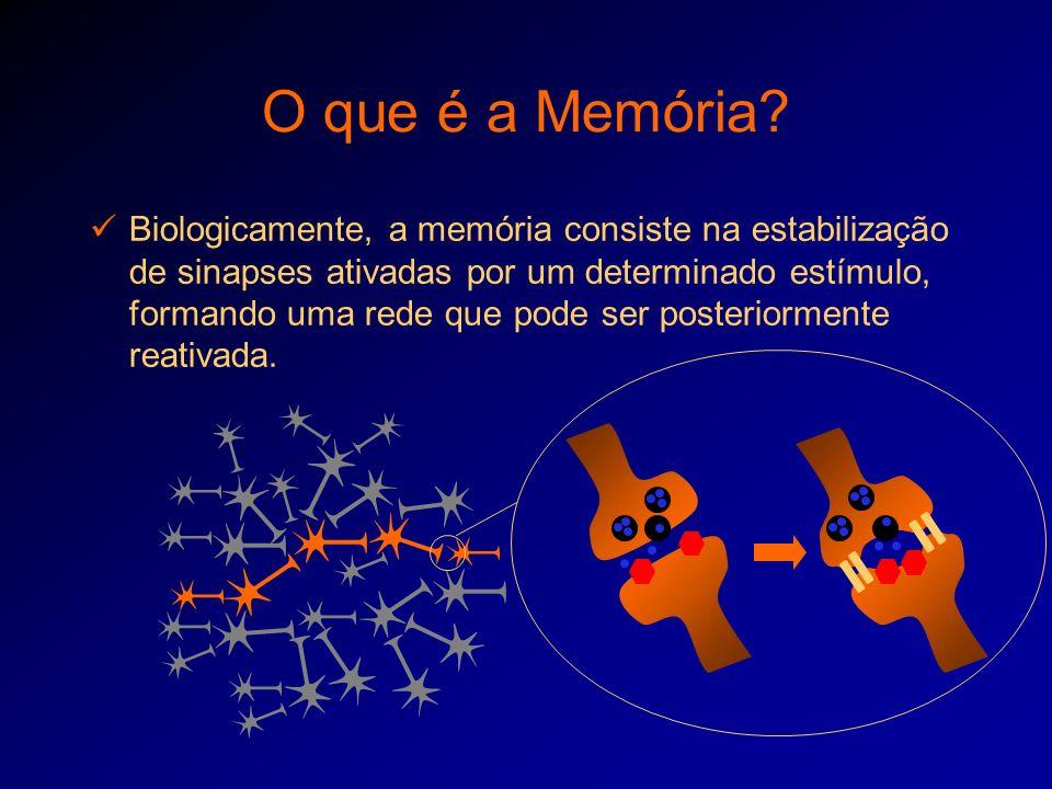 O que é a Memória
