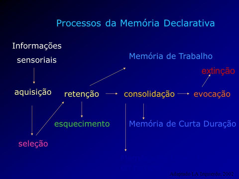 Processos da Memória Declarativa