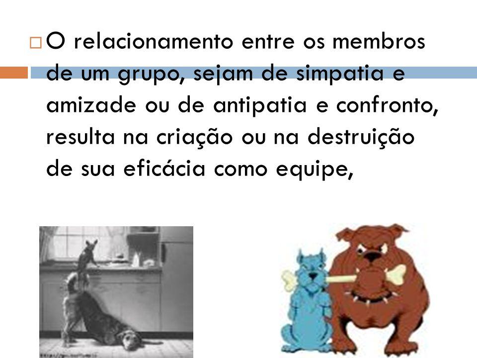 O relacionamento entre os membros de um grupo, sejam de simpatia e amizade ou de antipatia e confronto, resulta na criação ou na destruição de sua eficácia como equipe,