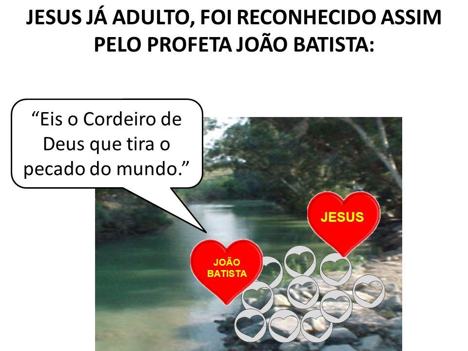 JESUS JÁ ADULTO, FOI RECONHECIDO ASSIM PELO PROFETA JOÃO BATISTA: