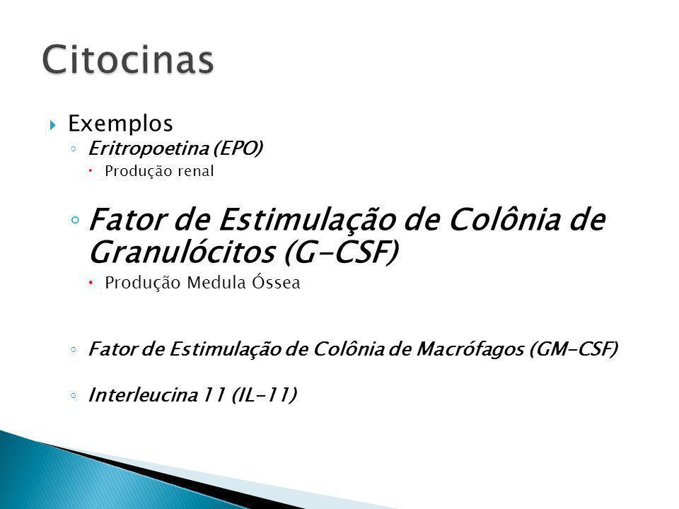 Citocinas Fator de Estimulação de Colônia de Granulócitos (G-CSF)