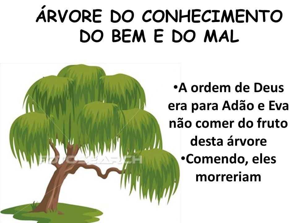 ÁRVORE DO CONHECIMENTO DO BEM E DO MAL