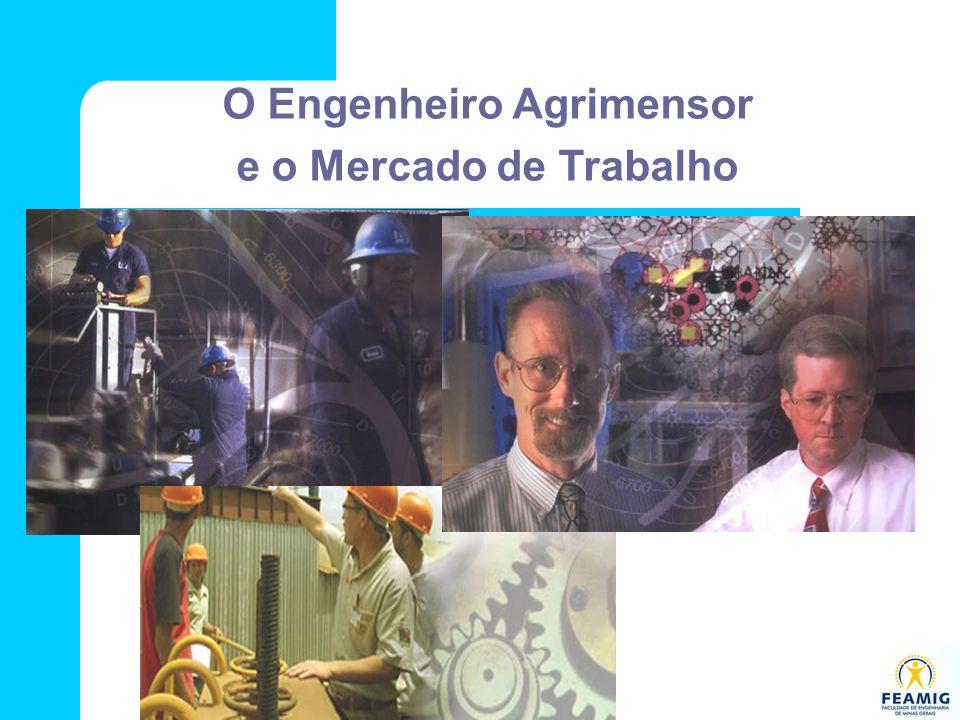 O Engenheiro Agrimensor