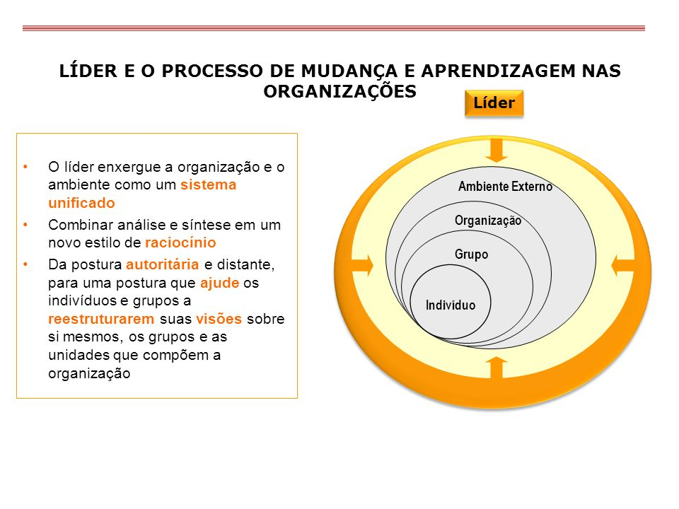 LÍDER E O PROCESSO DE MUDANÇA E APRENDIZAGEM NAS ORGANIZAÇÕES