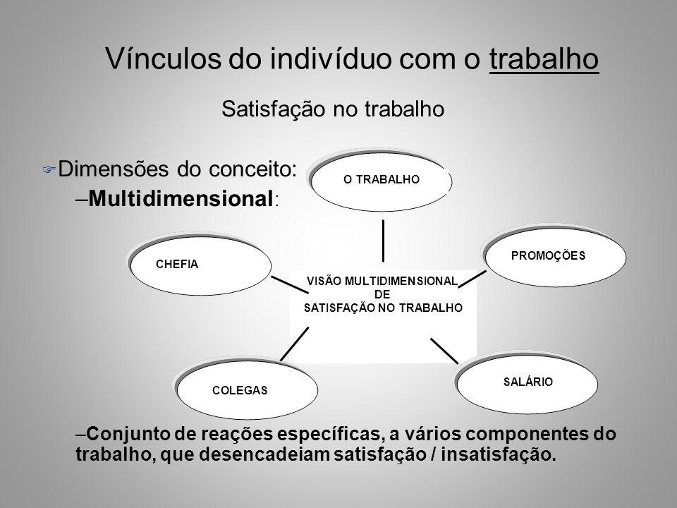 VISÃO MULTIDIMENSIONAL SATISFAÇÃO NO TRABALHO