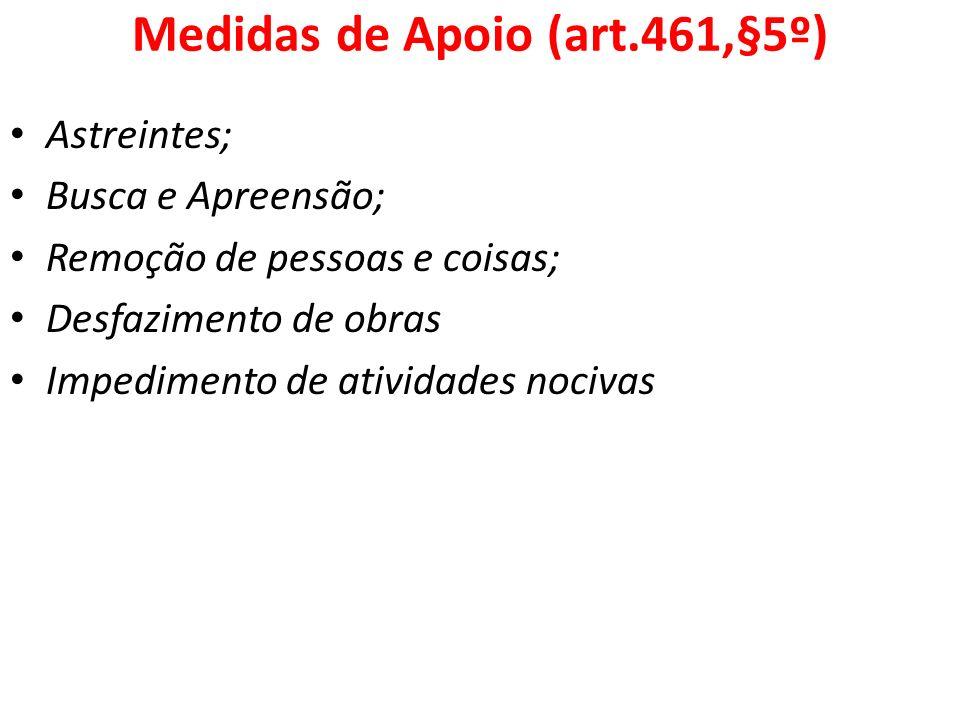 Medidas de Apoio (art.461,§5º)