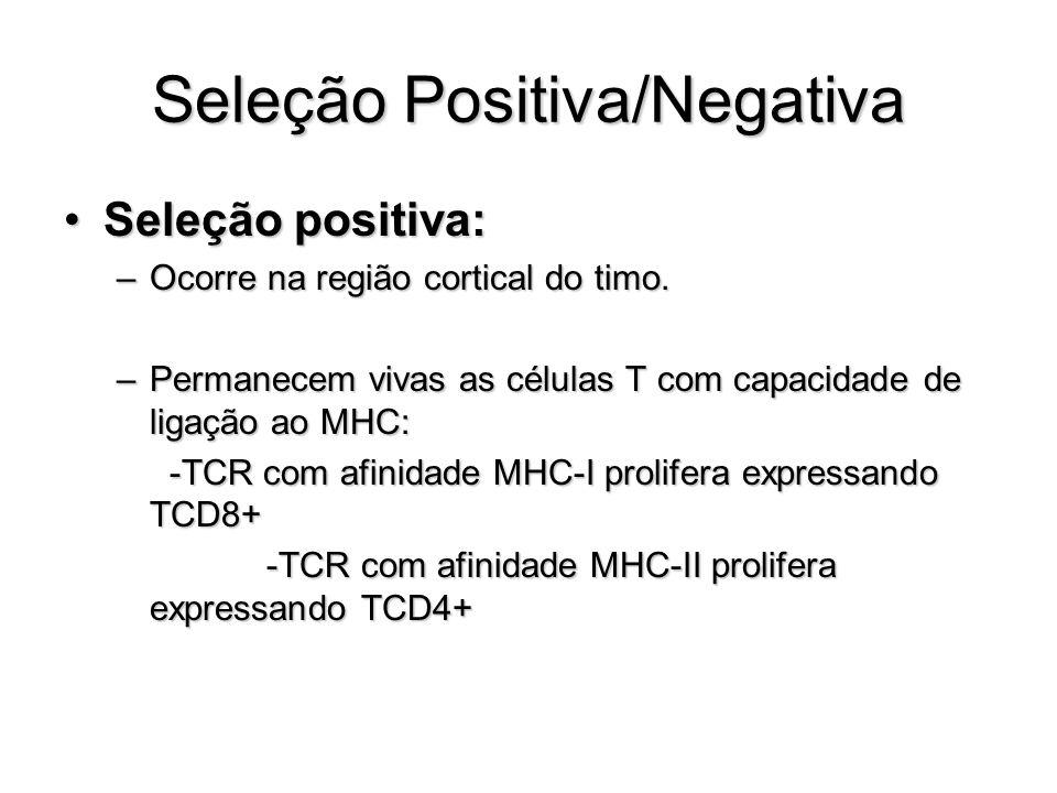 Seleção Positiva/Negativa