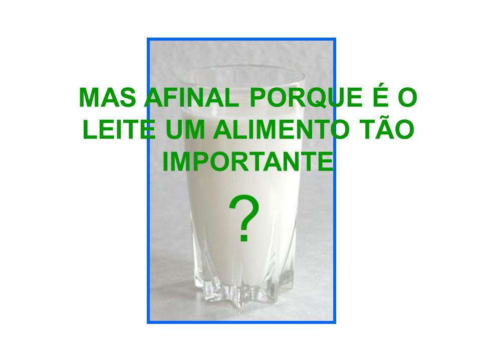 MAS AFINAL PORQUE É O LEITE UM ALIMENTO TÃO IMPORTANTE