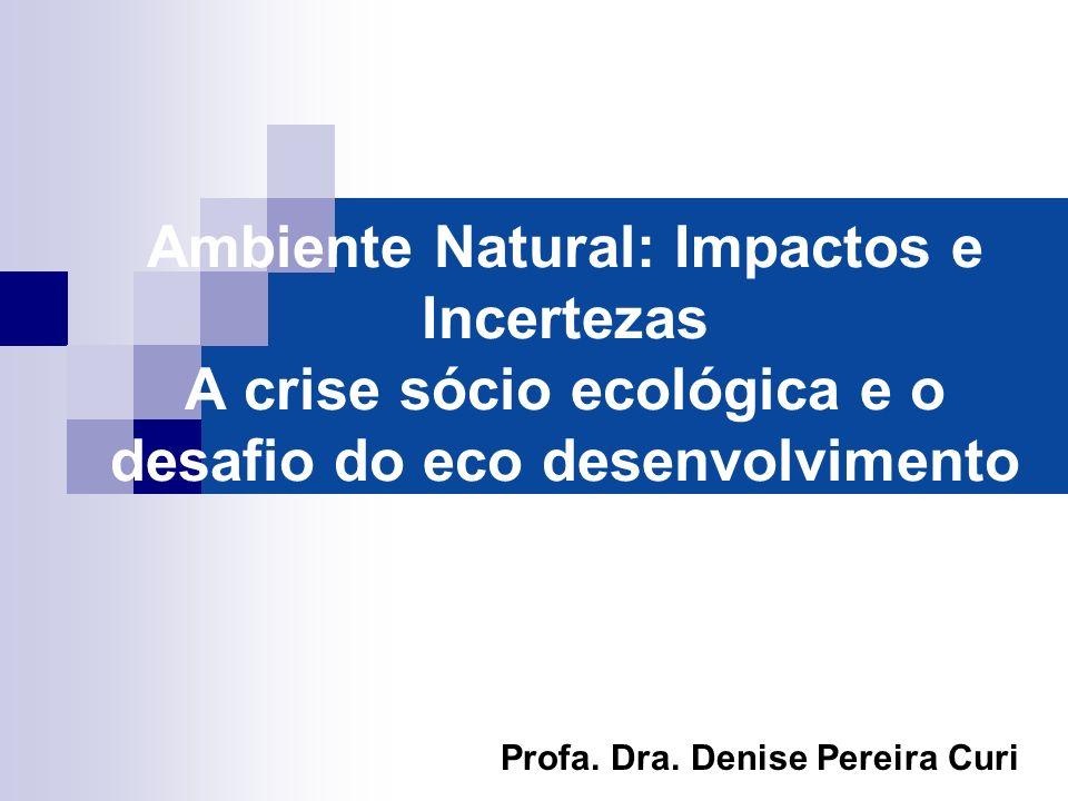 Ambiente Natural: Impactos e Incertezas A crise sócio ecológica e o desafio do eco desenvolvimento
