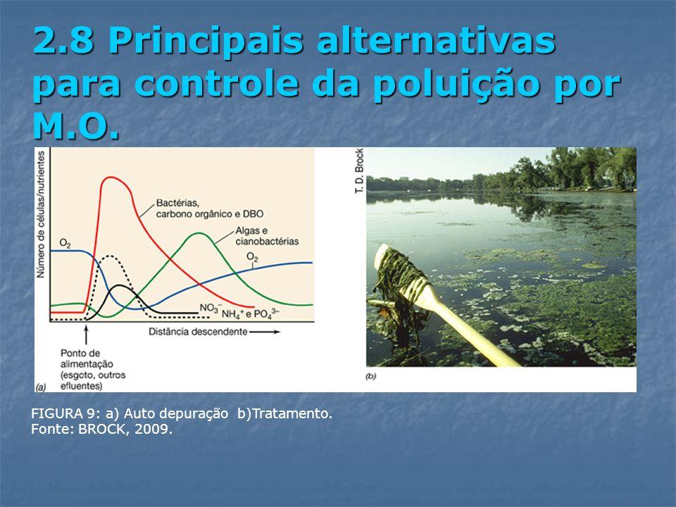 2.8 Principais alternativas para controle da poluição por M.O.