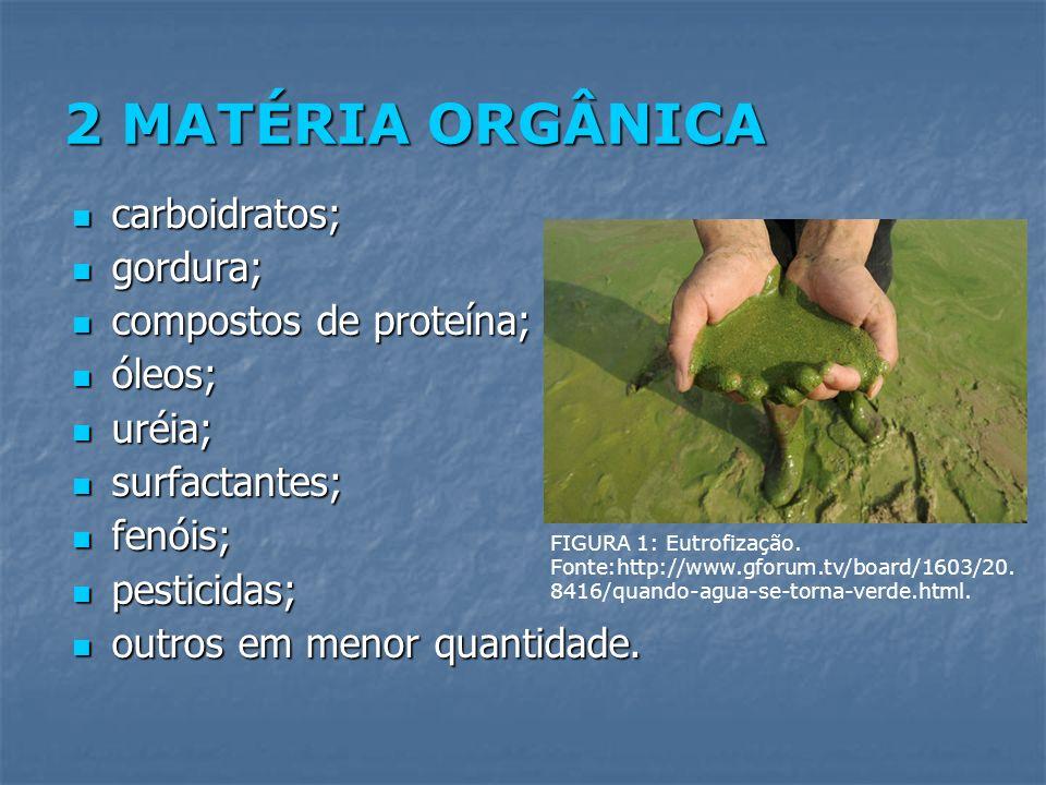 2 MATÉRIA ORGÂNICA carboidratos; gordura; compostos de proteína;