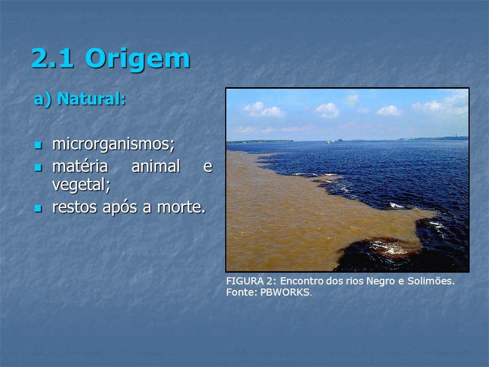 2.1 Origem a) Natural: microrganismos; matéria animal e vegetal;