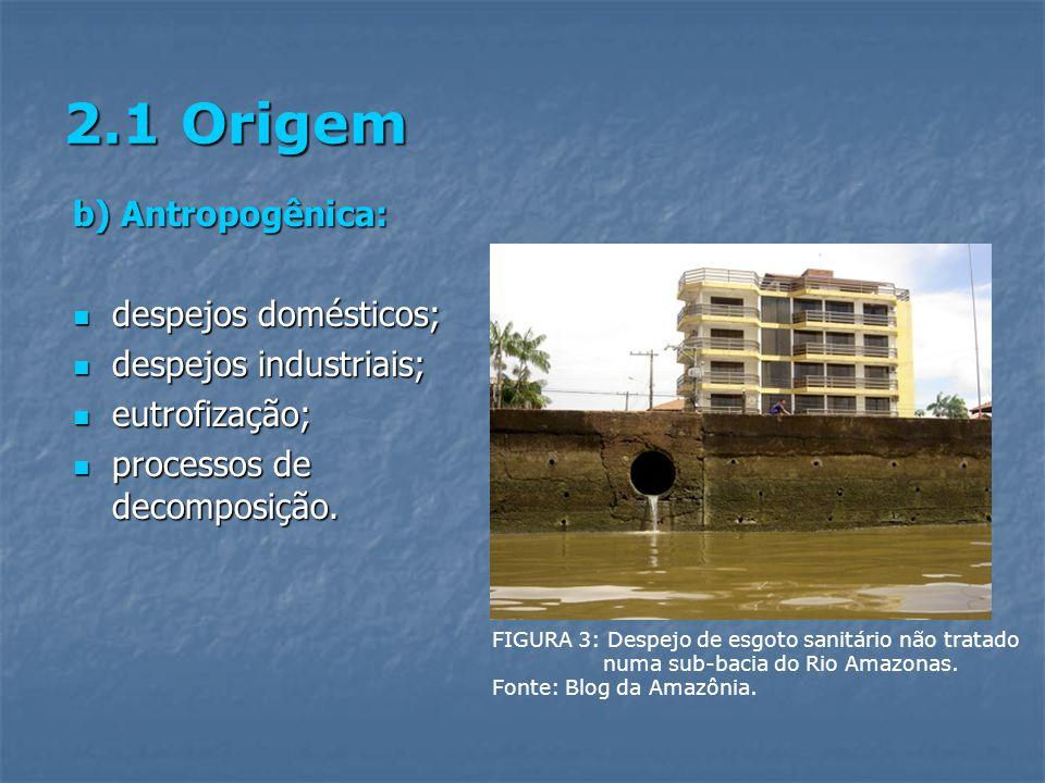 2.1 Origem b) Antropogênica: despejos domésticos;