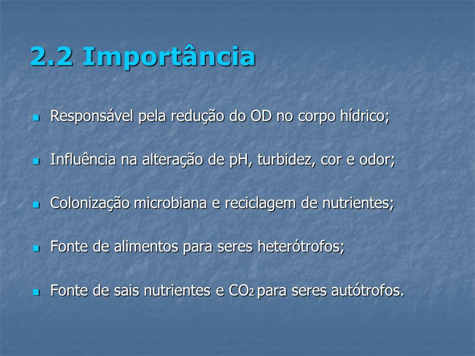 2.2 Importância Responsável pela redução do OD no corpo hídrico;