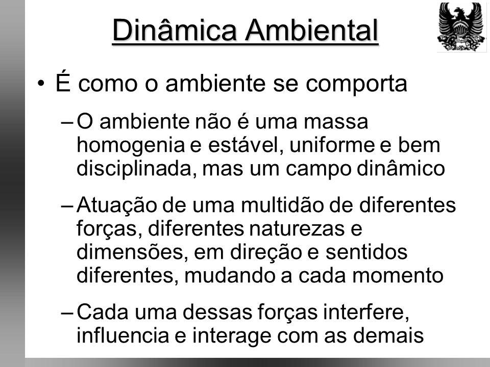 Dinâmica Ambiental É como o ambiente se comporta