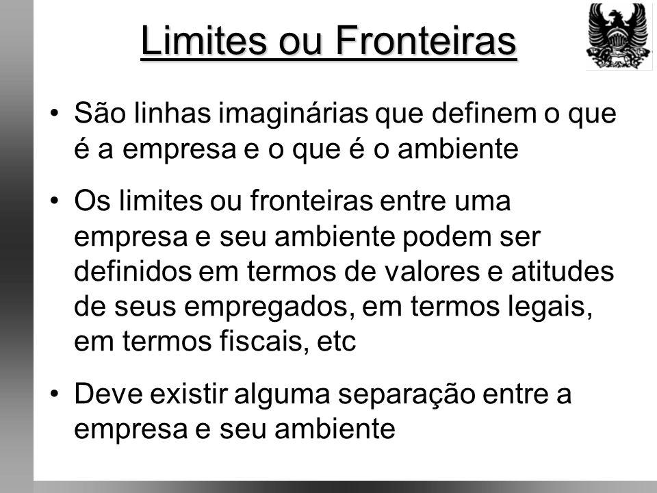 Limites ou Fronteiras São linhas imaginárias que definem o que é a empresa e o que é o ambiente.