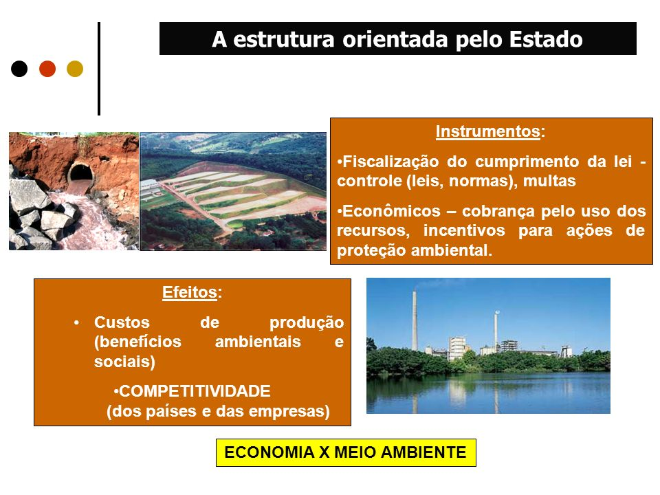 A estrutura orientada pelo Estado ECONOMIA X MEIO AMBIENTE