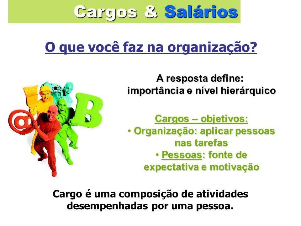 Cargos & Salários O que você faz na organização A resposta define: