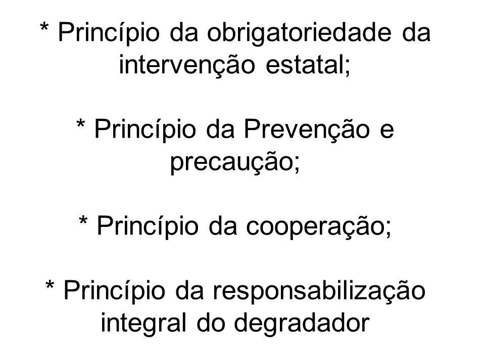 Princípio da obrigatoriedade da intervenção estatal;