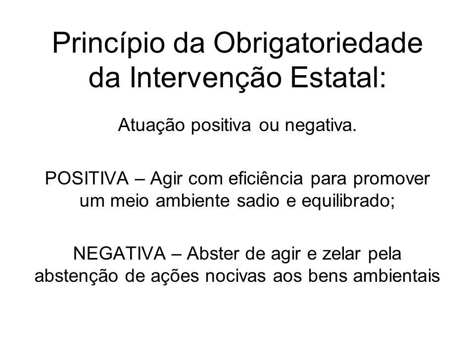 Princípio da Obrigatoriedade da Intervenção Estatal: