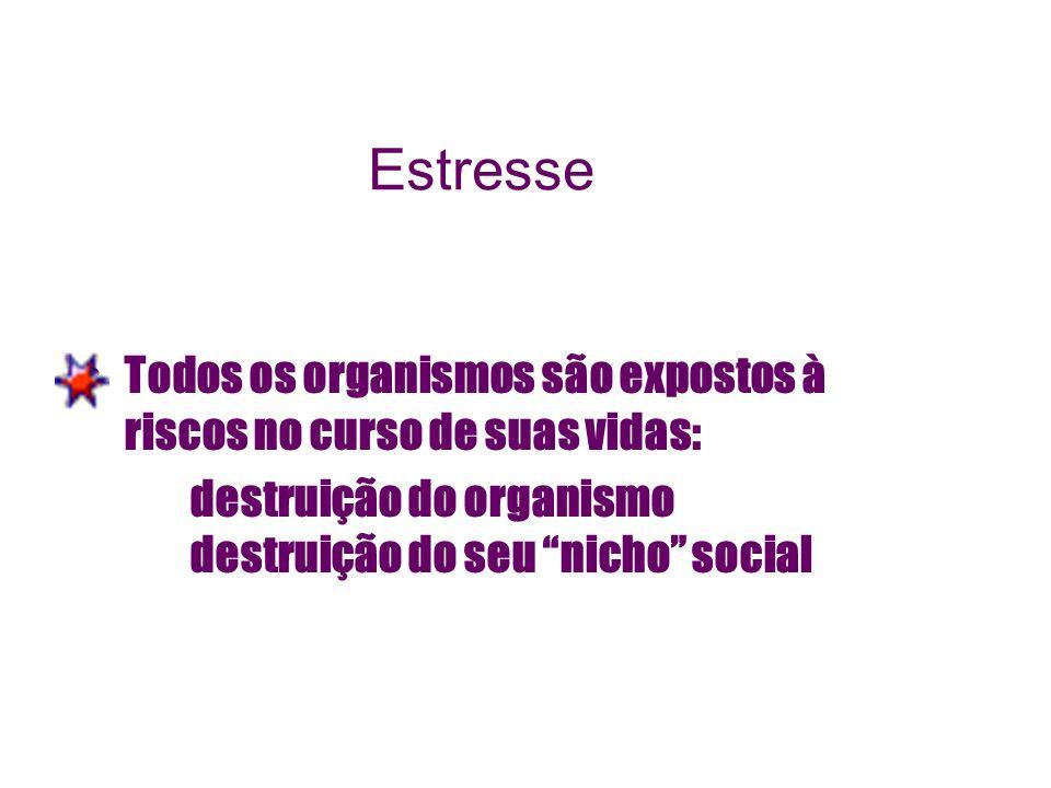 Estresse Todos os organismos são expostos à riscos no curso de suas vidas: destruição do organismo destruição do seu nicho social.