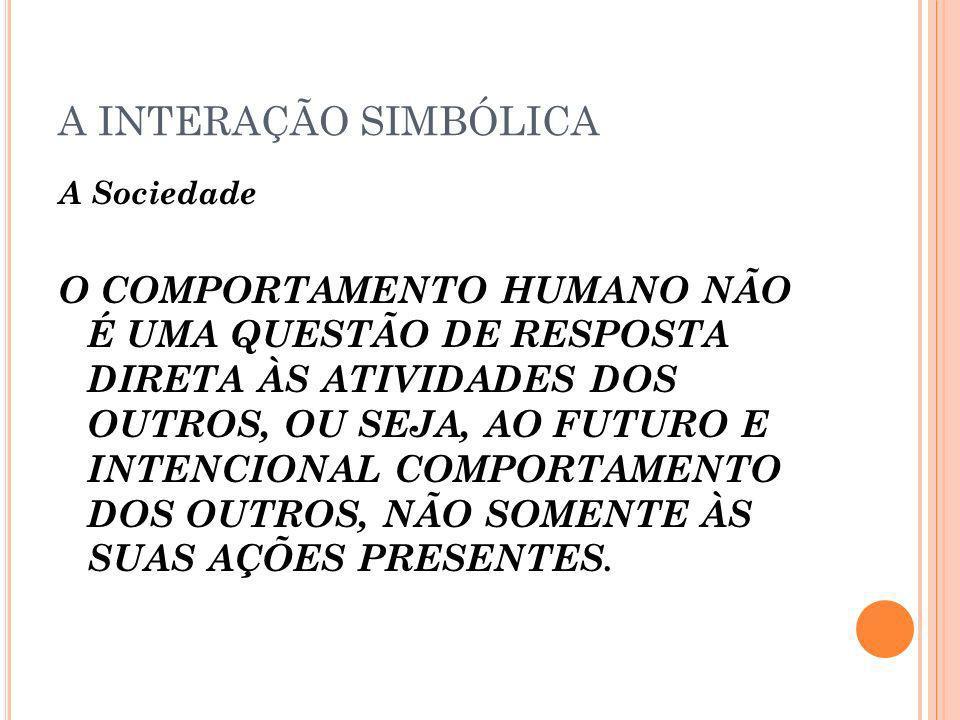 A INTERAÇÃO SIMBÓLICA A Sociedade.