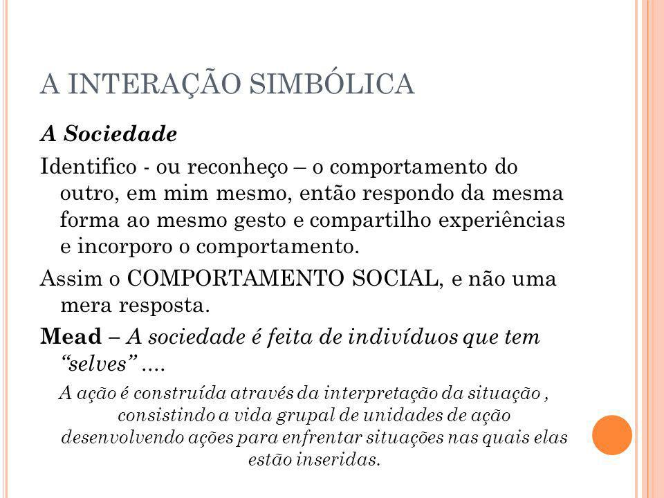 A INTERAÇÃO SIMBÓLICA A Sociedade