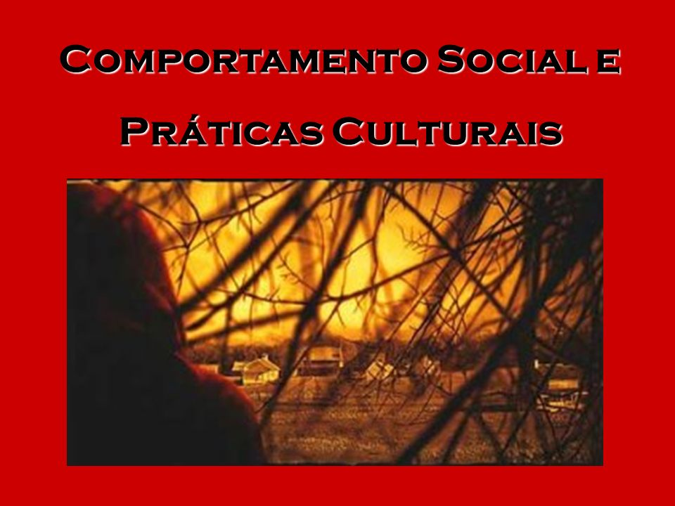 Comportamento Social e