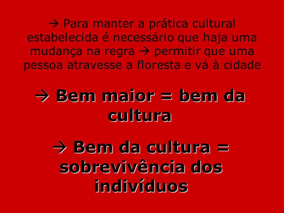  Bem maior = bem da cultura