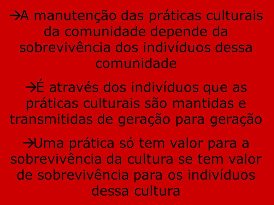 A manutenção das práticas culturais da comunidade depende da sobrevivência dos indivíduos dessa comunidade