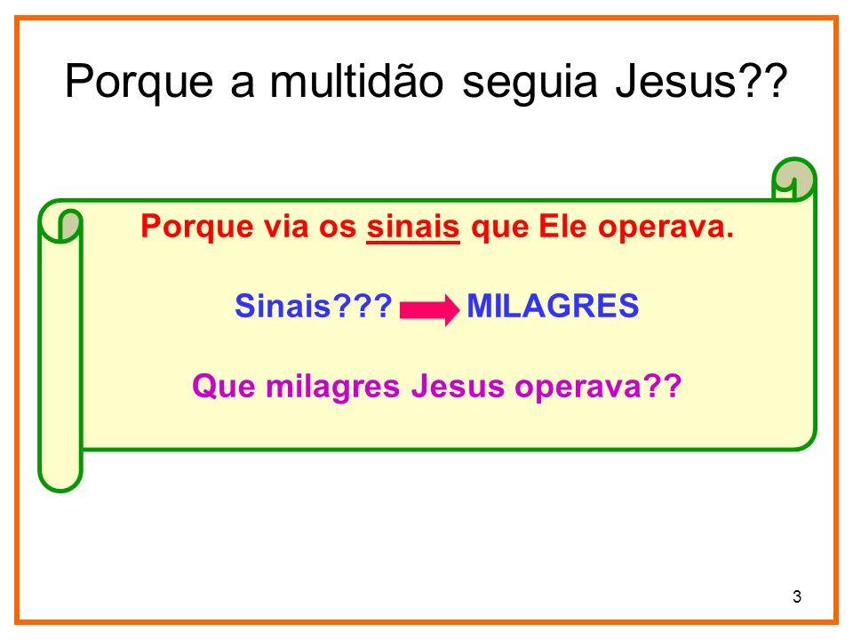 Porque a multidão seguia Jesus