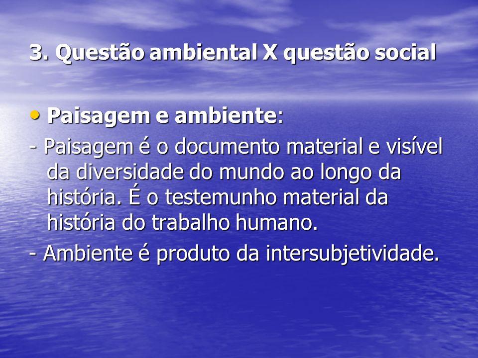 3. Questão ambiental X questão social