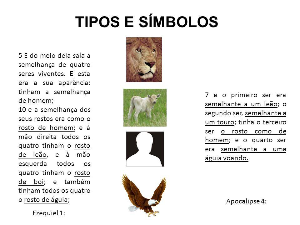 TIPOS E SÍMBOLOS 5 E do meio dela saía a semelhança de quatro seres viventes. E esta era a sua aparência: tinham a semelhança de homem;