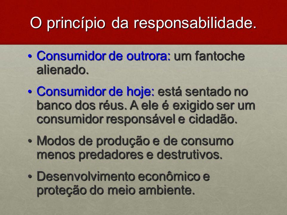 O princípio da responsabilidade.