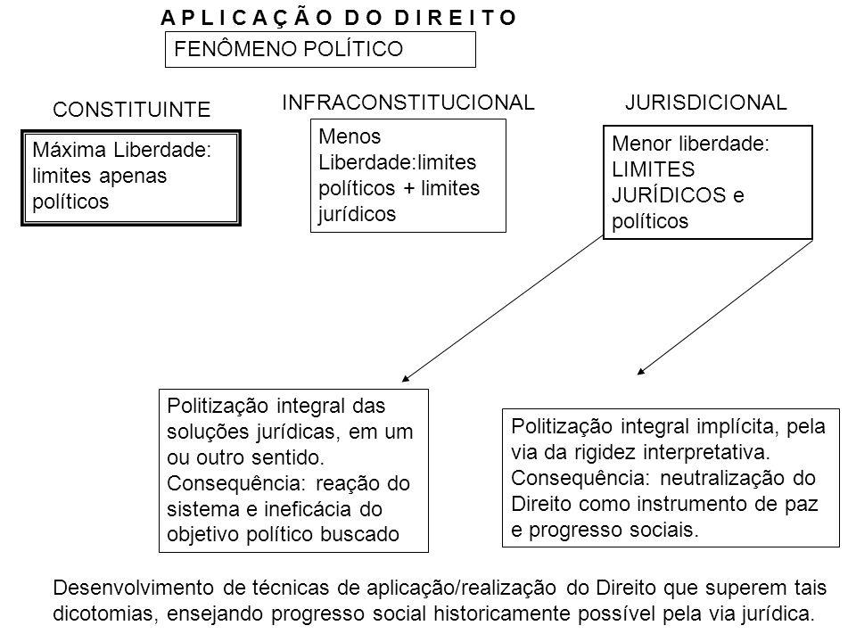 A P L I C A Ç Ã O D O D I R E I T O FENÔMENO POLÍTICO. INFRACONSTITUCIONAL. JURISDICIONAL. CONSTITUINTE.