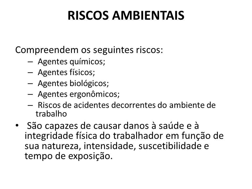 RISCOS AMBIENTAIS Compreendem os seguintes riscos: