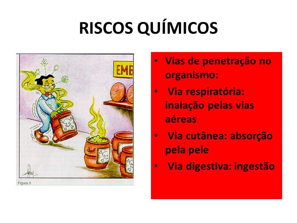RISCOS QUÍMICOS Vias de penetração no organismo: