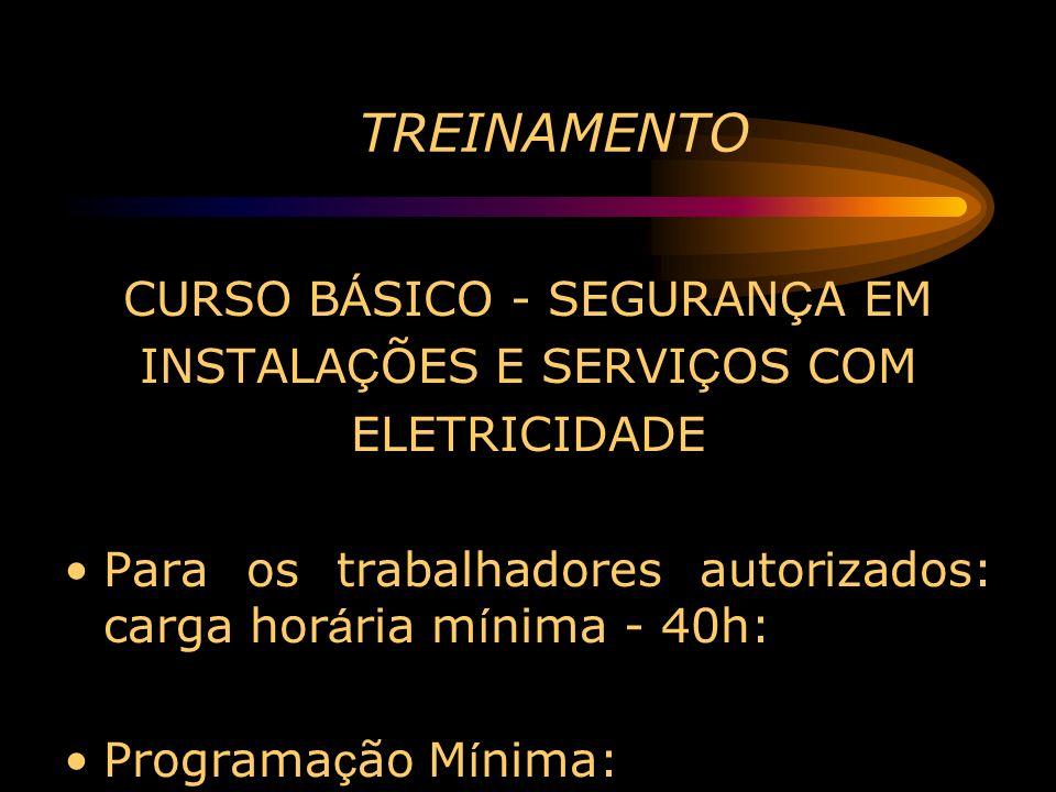 TREINAMENTO CURSO BÁSICO - SEGURANÇA EM INSTALAÇÕES E SERVIÇOS COM